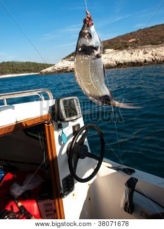 fish on the hook on the fishing boat poster