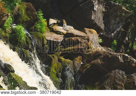 Waterfall In Dense Forest. Mountain River. Woodland Creek. Water Stream With Splashes. Rocky Waterco