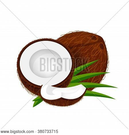 Coconut Half Slice On Leaf Green, Coconut Brown Fruit Half Cut Isolated On White