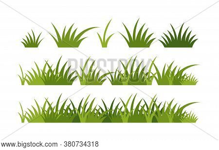 Green Vector Grass, Horizontal Border. A Set Of Elements For Design, Green Meadow, Spring Greenery,