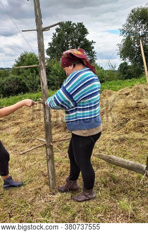 Haymaking Season, Two Village Women Work In The Field, Preparing A Wooden Support For Drying Hay On