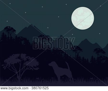 Mountains And Wood Landscape In Starry Night