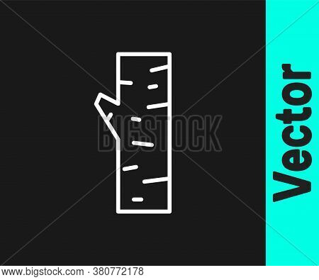 White Line Birch Tree Icon Isolated On Black Background. Vector