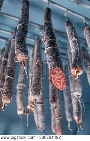 Tasty Gourmet Salami. Salami With Hazelnut Hanging In The Warehouse