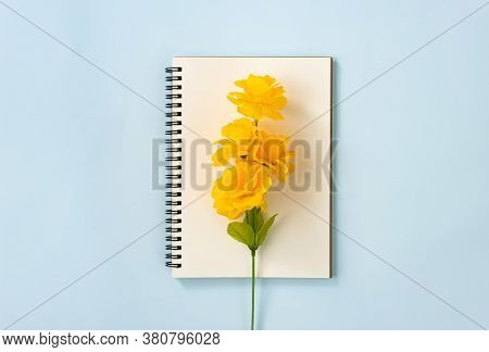 Spiral Notebook Or Spring Notebook In Unlined Type And Orange Flowers At Center On Blue Pastel Minim