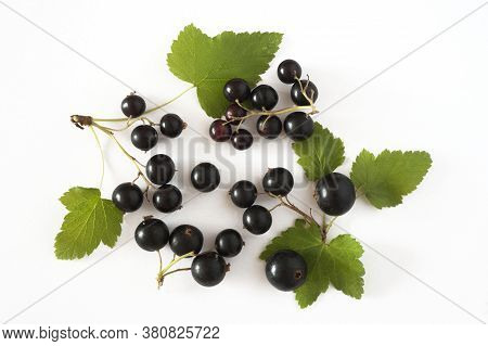 Fresh, Nutritious And Tasty Black Currant With Currant Leaf  On White Background