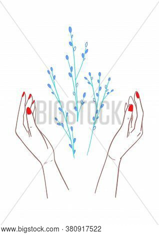 Tree Branch With Bud Blooms In The Hands. Hand Drawn Early Spring Buds Grow Out Of The Palms. Blosso