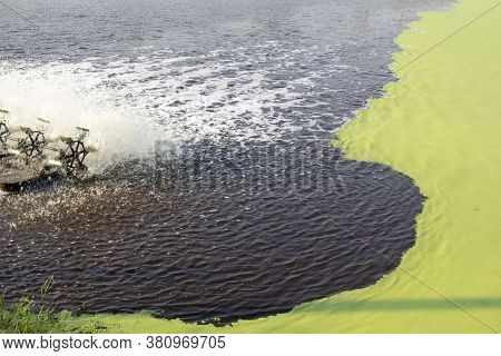 Wastewater Treatment Using Duckweed. This Technology Is Inexpensive To Construct And Operate, And Ea