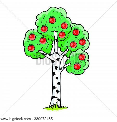 Strange Birch Tree On Which Apples Grow, Cartoon Illustration, Isolated Object On White Background,