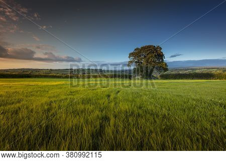 View Of The Carmarthenshire Landscape In Wales, On The Hills South Of Pontwelly.  July 2020