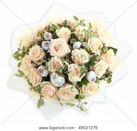 Floral Compositions With Cream Colored Roses And Seashells. The Isolated Image On A White Background