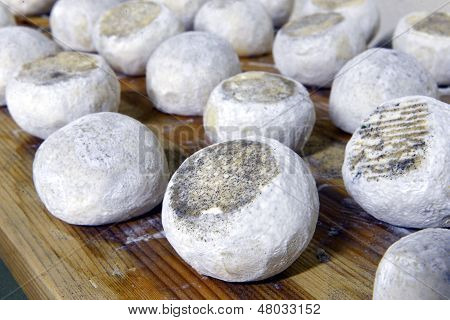 Well Ripened Goat And Ewe Cheeses