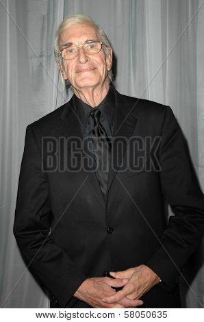 Martin Landau  at the 35th Annual Vision Awards. Beverly Hilton Hotel, Beverly Hills, CA. 06-12-08