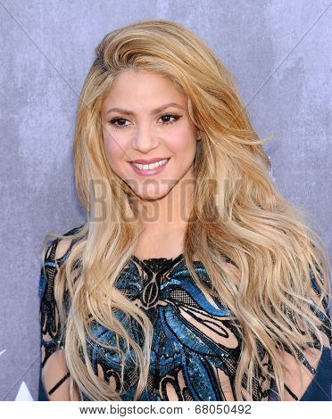 LOS ANGELES - APR 06:  Shakira arrives to the 49th Annual Academy of Country Music Awards   on April 06, 2014 in Las Vegas, NV.