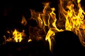 Flames of Fire in a Fireplace against a black Background poster