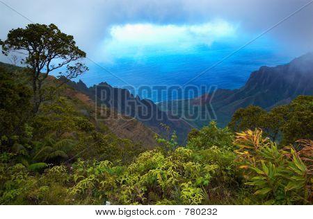 Kalalau lookout on Kauai