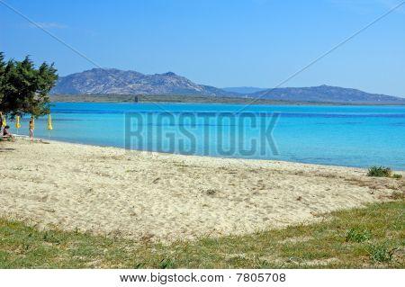 Clean Sea