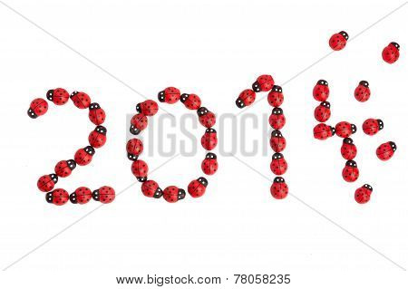 Ladybug For Luck In 2015