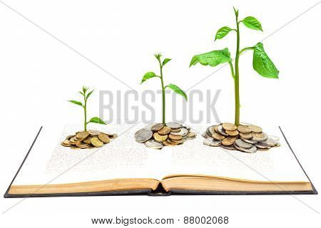 trees growing from books with coins / A big open book with coins and tree.