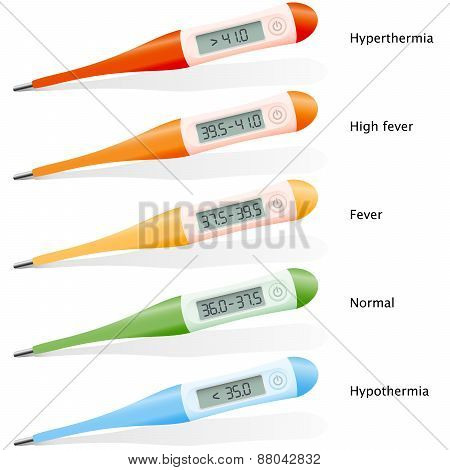 Fever Digital Thermometer