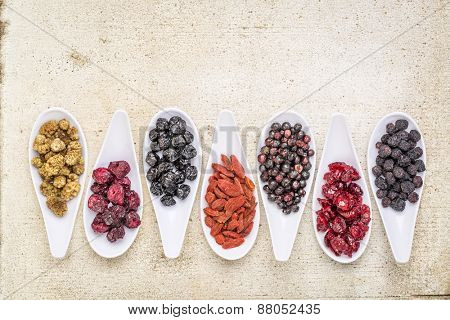 healthy dried berry collection (blueberry, mulberry, cherry, goji, elderberry, chokeberry,) cranberry on  ceramic spoons against rustic barn wood with a copy space