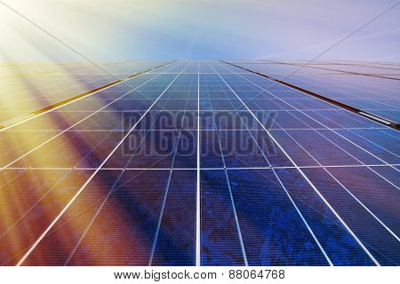 Solar Panels In Sunlight