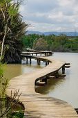 An elevated wooden footpath over a water pond in En Afek Nature Reserve northern Israel poster