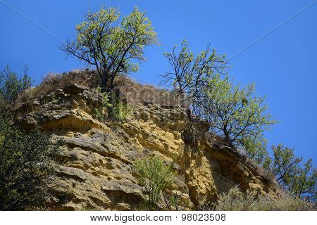 Landscape With Rocks And Bushes In Provence, South Of  France
