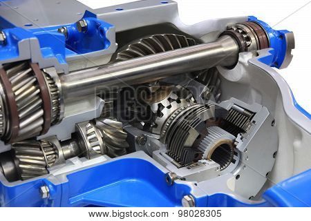 The Differential Gear