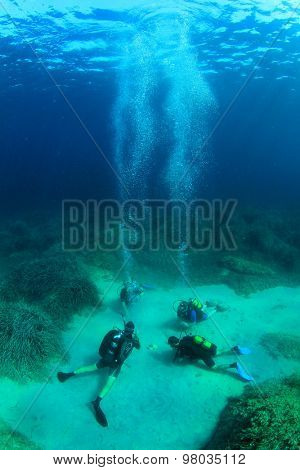 Open Water Course Scuba Diver Training in Ocean with Instructor and Students