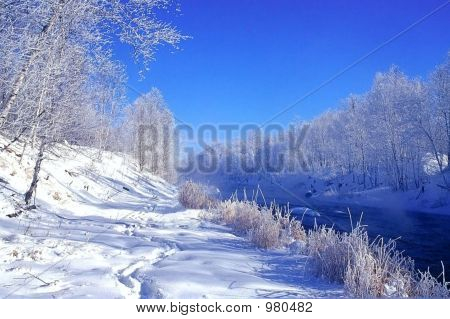 Hoar Frost At Junction Creek