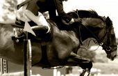 tight close-up image of horse & rider clearing a jump in an equestrian showjumping event  (soft focus sepia tone). poster