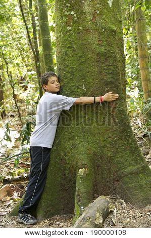 Hispanic boy hugging tree in forest
