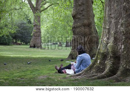 London United Kingdom 6 may 2017: woman sits and reads on the grass near old tree in london st james's park
