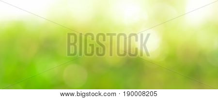 Abstract green bokeh - panoramic banner background
