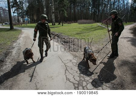 Warriors Sappers With Service Dogs