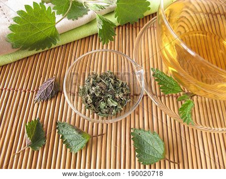 Cup of nettle tea, dried herbs and fresh nettle leaves