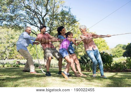 Happy family playing tug of war in the park