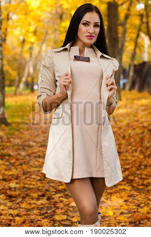 charming brunette on background of autumn park