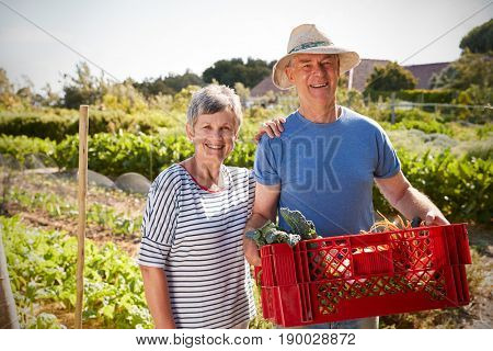 Portrait Of Mature Couple With Crate Of Produce On Allotment