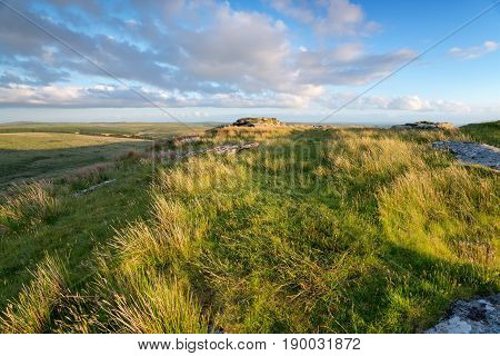 Grassy moorland at the top of Garrow Tor on Bodmin Moor in Cornwall