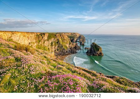 Cornish Cliffs In Summer
