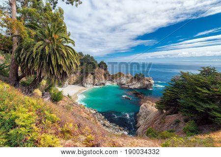 Beautiful beach with palm trees, Julia Pfeiffer beach, Big Sur. California, USA