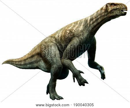 Iguanodon from the Cretaceous era 3D illustration
