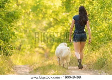 Woman Walking In The Nature With Her Dog