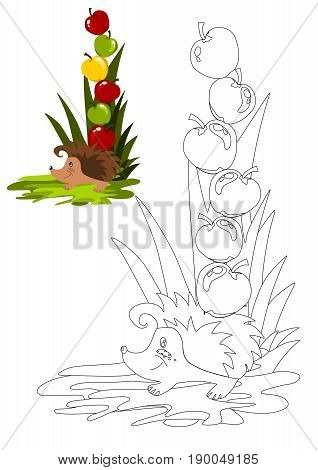 Coloring book with hedgehog - vector illustration.