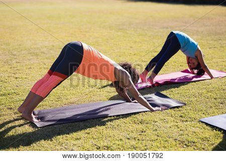 Girl practicing downward facing dog positiong with female trainer at park