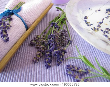 Bath essence with milk and lavender in bowl