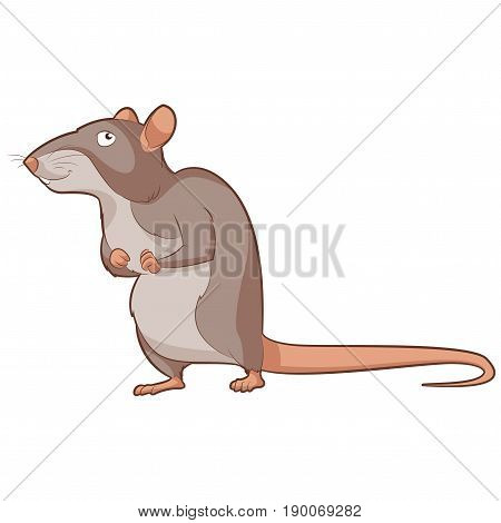 Vector image of the Cartoon smiling Rat