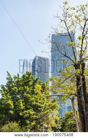 Green Trees And Tower Buildings In Guangzhou City